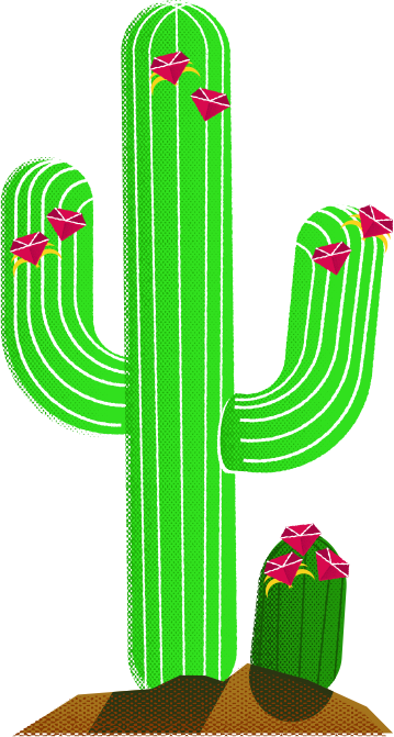 Rubycentralcactus
